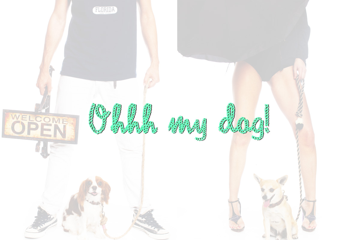 Ohhh my dog!
